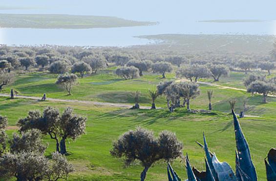 Tunisko - Golf - Flamingo Golf Club